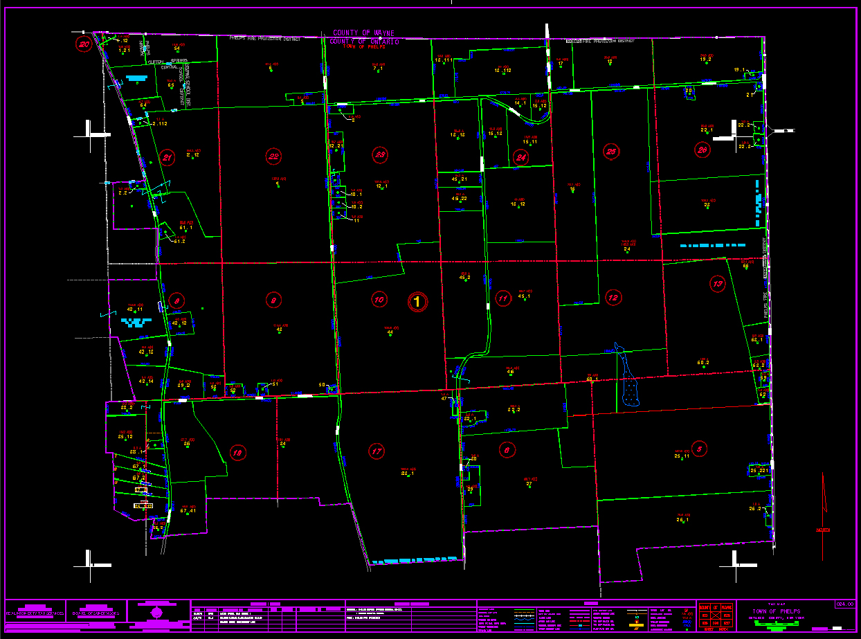 Parcel Mapping Case Study Image Ontario County NY