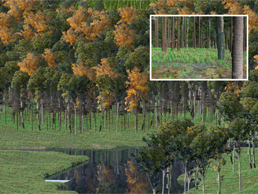 Figure 2: Example of detailed foliage and ground cover symbology for a mixed Oak stand.